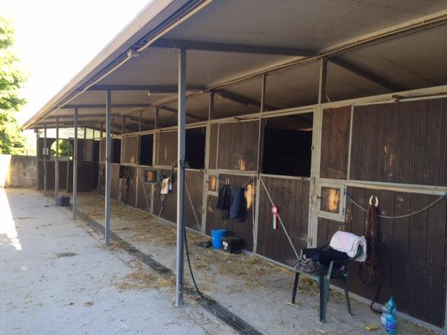 Vendo box usati id 197838 for Box cavalli usati vendo