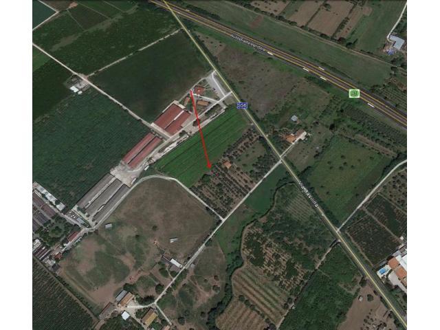 Terreno agricolo cod 188 - 5/5